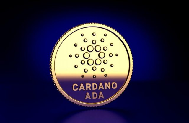 Image result for Cardano Foundation